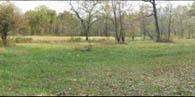 Gettysburg Battlefield: Spangler Meadow